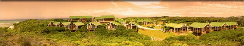 Corporate Group Conference Team Building Accommodation Venue Port Elizabeth venue Eastern Cape South Africa