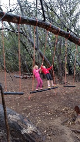 Obstacle swing2