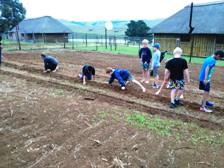 KZN Midlands Camp Garden Planting