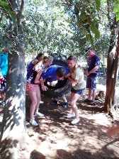 Camp Venue-Hekpoort 2-Activities-Obstacle Course 5