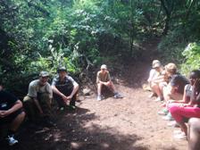 activities-5-forest-walk