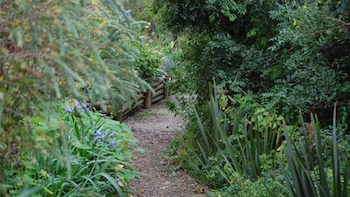 This image has an empty alt attribute; its file name is Garden-path-350-.jpg