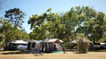 This image has an empty alt attribute; its file name is TENTED-CCAMP-AREA_350-197.jpg